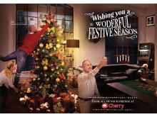 Wishing you a Wonderful Festive Season!