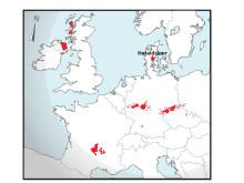 Kortet viser områder med en strontiumisotopsignatur, der matcher signaturen i Haraldskærkvindens hår