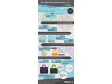 Infographic Netigates Medarbetarrapport 2013