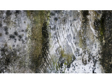 Sanering och avfuktning av krypgrund