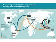 Koldioxid-utsläpp från tropisk avskogning kopplade till global handel