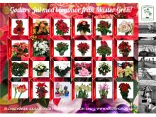 Julkalendern från den Skånska trädgårdsmästaren