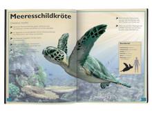 Das Riesenbuch der Meerestiere - Innenseite 2