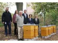 Bienen bei der SIGNAL IDUNA