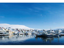 Norwegens Küste bietet mit 101.000 Kilometer Länge die optimalen Lebens- und Umweltbedingungen für den Lachs.