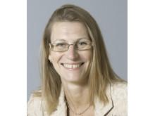 Nilla Helgesson, Skyddsvärnets direktor/VD