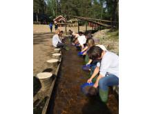 Tyska researrangörer vaskar guld i Ädelfors