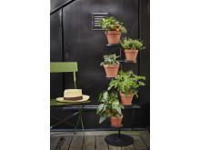 Tilia Pedistal Herbs Plantagen