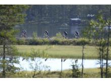 Cykelvasan 2015, en naturupplevelse i historisk miljö