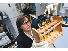 Forskare analyserar hållbara material