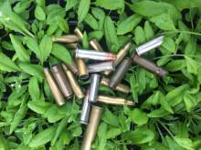 Backtrav (Arabidopsis thaliana) med ammunition.