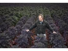 Odlaren mattias Hansson i ett fält med Flower Sprouts