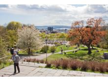 Flere af scenerne i SKAM er optaget i St. Hanshaugen, Oslo