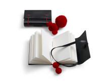 Papper och stygn - Skinnböcker inspirerade av Leksandsdräktens skor.