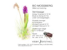 Annons Bo Mossberg