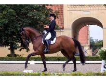Ung dressyrtalang siktar mot OS med Horsemeup.se_3 (bild)