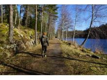Vandring intill Bjursjön