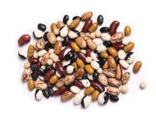 Bönor är livsmedel med bra proteinvärde.