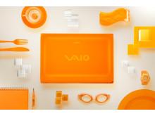 C_14_17405 Orange