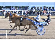 Hästarnas Mästare på Jägersro - Gretzer och Kolgjini