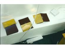 Gold leaf Passports