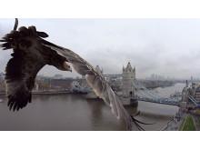 Sony Action Cam Mini London_5