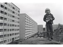 Hammarkullen, 1973