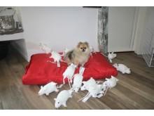 Madicken, omgiven av hundar