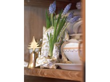 Pärlhyacint i bokhylla