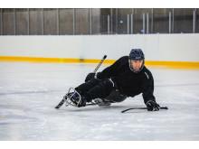 Paraishockey/Kälkhockey hos Göteborg Hockey Club