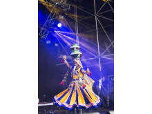 Talab Kalbeliya Dance Group gästade kulturfestivalen 2016.