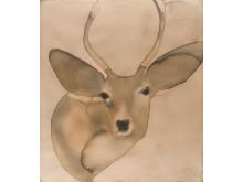 Deer_2006_Akvarell_©MatsGustafson