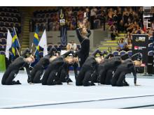 SM-final truppgymnastik