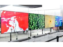LG SIGNATURE OLED TV W_1