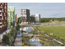 Kaj mot det gröna - Barkarbystaden intill Järvafältet