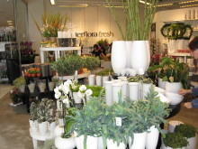 Interflora Fresh Blomsterdesign Marieberg/Örebro, krukor