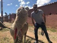 Andere Länder, andere Sitten. Ich glaub´, mich knutscht ein Lama.