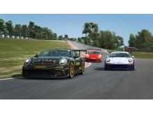 Finalen i Porsche Esports Carrera Cup Scandinavia livesänds på Viasat Motor och streamingplattformen Viaplay kl. 15:00-18:00 den 23:e november.