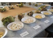 29 sorters kålrot provades på Matbordet hos Mathias Dahlgren