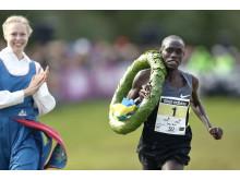 Lewis Korir, Kenya, segrare 2014