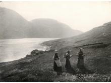 Malkepiger på vej til malkepladsen i udmarken på Færøerne