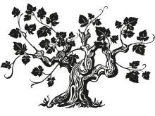 Vinranka beskuren med Albarello-metoden