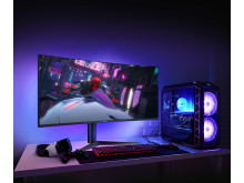 LG 1ms IPS gaming monitor