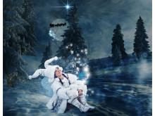 The Christmas Star fairy (Julens stjärna)