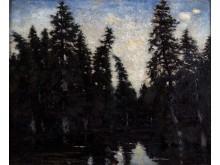 Carl Fredrik Hill, Svarta granar, 1878.