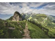 BlickVomHohenKastenAufDenAlpstein(c)SchweizTourismus_RenatoBagattini
