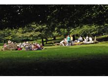 Dyrehavsbakken picnic