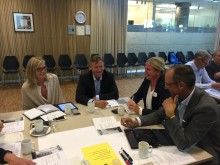 Workshop 30. august 2017 Bærekraftig boligutvikling