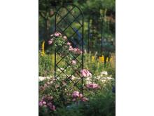 Enkel elegans ger höjd i din trädgård