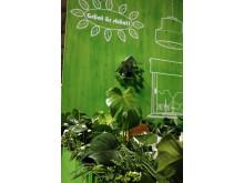 Gröna växter från vårt 70-tal